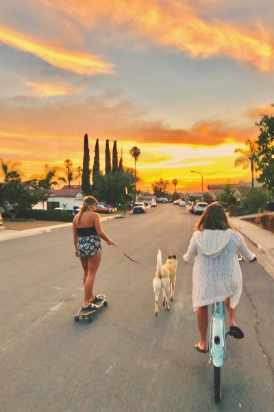 Girls on their bike and skateboard taking Shelby for a walk during a bright